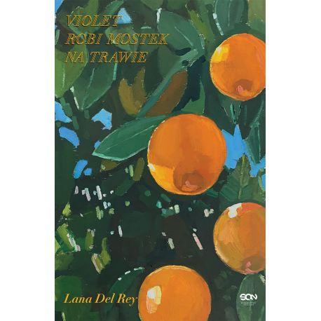 Okładka książki Violet robi mostek na trawie w księgarni Labotiga